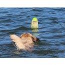 DOOG Seal - Lieutenant Flipper