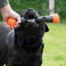 Dog Comets Meteor Wurfstock Orange / L