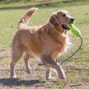 KONG Air Fetch Stick L mit Seil