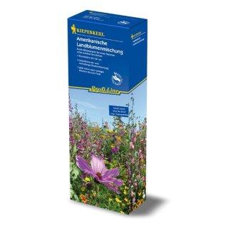 Kiepenkerl Profi-Line Blumenmischung Amerikanische Mischung